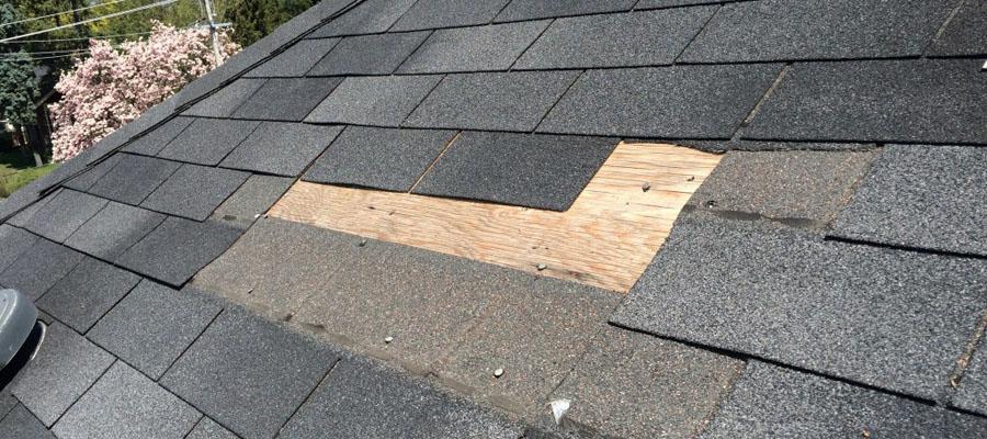 stogo apsiltinimas